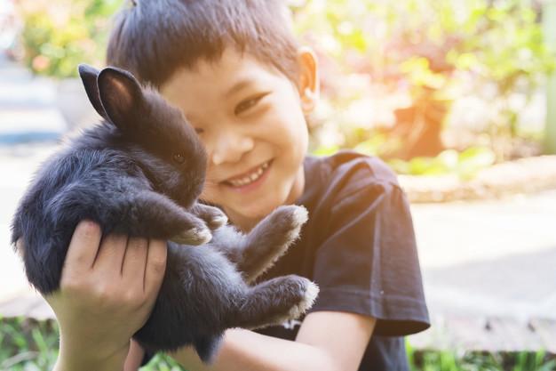 barn med kanin